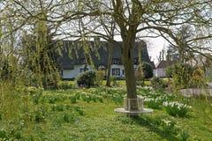 Сад коттеджа весной Стоковые Фотографии RF