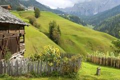 Сад коттеджа в Альпах Стоковое Изображение