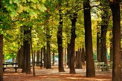 Сад Люксембурга, Парижа Стоковые Изображения RF