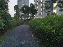 Сад на пятом поле Стоковое фото RF