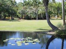 Сад Неаполь ботанический Стоковые Изображения