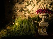 Сад ночи и предпосылка цветка, светлый центр Стоковое Изображение