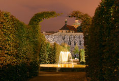 Сад ночи стоковые фотографии rf