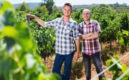 2 садовника стоя совместно в дворе дерева виноградин Стоковое Изображение RF