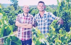 2 садовника стоя совместно в дворе дерева виноградин Стоковое Фото