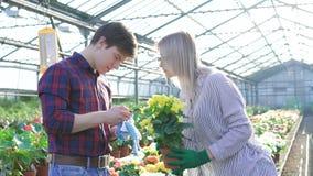 Садовники проверяя цветки и используя smartphone 4K видеоматериал
