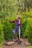 Садовник женщины выкопал вверх дерево, пребывание садовника около туи Стоковое Изображение