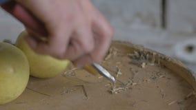 Садовник кладет ножницы на таблицу после работы Садовник позаботится о кусты видеоматериал