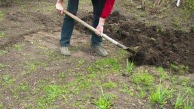 Садовник молодого человека выкапывает землю с лопаткоулавливателем в саде Промежуток времени акции видеоматериалы