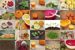 Садовничать и здоровая предпосылка коллажа еды Стоковое фото RF