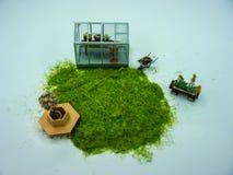 Садовничать: Миниатюрные парник, стенд и тачка Стоковая Фотография