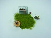 Садовничать: Миниатюрные парник, стенд и тачка Стоковые Изображения RF