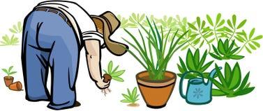 Садовничать персоны бесплатная иллюстрация