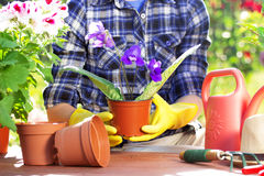 садовничать принципиальной схемы Засаживать цветки на саде Стоковое фото RF