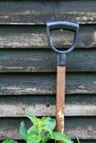 Садовничать сада Стоковые Изображения