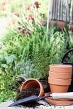 Садовничать травы Стоковое фото RF