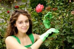 садовничать cutie Стоковое Фото