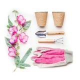 Садовничающ или засаживающ концепцию с садовыми инструментами, засаживающ баки торфа и розовые перчатки и цветки на белой предпос Стоковое Изображение
