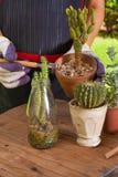 садовничая время Стоковая Фотография RF