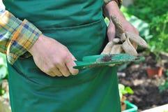 Садовничая инструмент Стоковое фото RF
