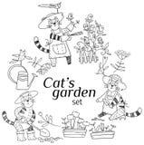 Садовничая кот Стоковое Изображение