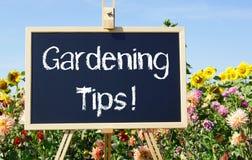 Садовничая подсказки - доска с цветками в саде Стоковые Фото
