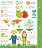 Садовничая работа, обрабатывать землю infographic Apple Графический шаблон Fl Стоковые Изображения