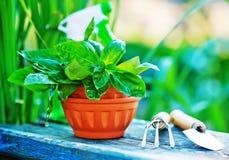 садовничая утварь Стоковые Изображения