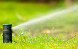 Садоводство Вода спринклера лужайки распыляя над травой Стоковое Фото