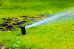 Садоводство Вода спринклера лужайки распыляя над травой Стоковая Фотография