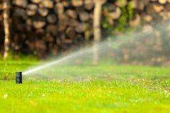 Садоводство Вода спринклера лужайки распыляя над травой Стоковая Фотография RF