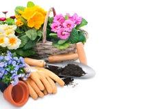 Садоводство Стоковые Изображения