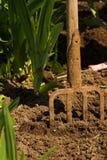 Садоводство Стоковая Фотография RF