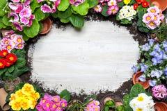 Садоводство Стоковая Фотография