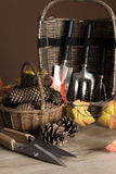 Садовые инструменты на осень Стоковая Фотография RF