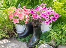 Садовый инструмент и смешной котенок Стоковые Фото
