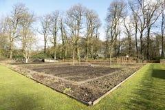 сад органический Стоковая Фотография