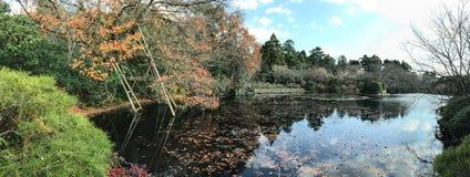 Сад осени с озером Стоковое Изображение RF