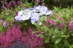Сад осени Стоковая Фотография RF
