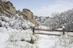 Сад парка богов в зиме Стоковая Фотография