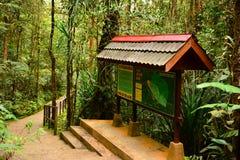 Сад парка Kinabalu ботанический в Сабахе, Малайзии Стоковые Изображения
