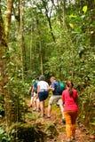 Сад парка Kinabalu ботанический в Сабахе, Малайзии Стоковые Фотографии RF