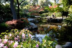 сад пар Стоковые Фото