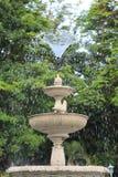 сад природы Стоковое Изображение RF