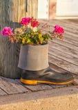 Сад резинового ботинка Стоковые Изображения RF