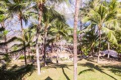 Сад рядом с пляжем Стоковые Фотографии RF