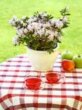 сад служил чай Стоковая Фотография RF