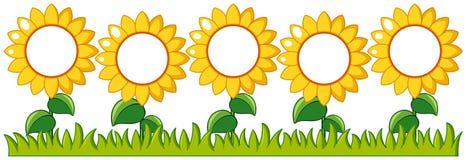 Сад солнцецветов с космосом сочинительства иллюстрация вектора