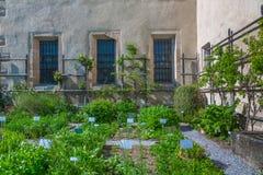 Сад травы монастыря Стоковые Фотографии RF