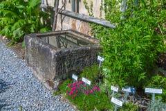 Сад травы монастыря Стоковое Фото